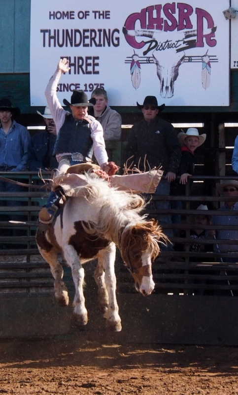 HSRodeo_201403_036
