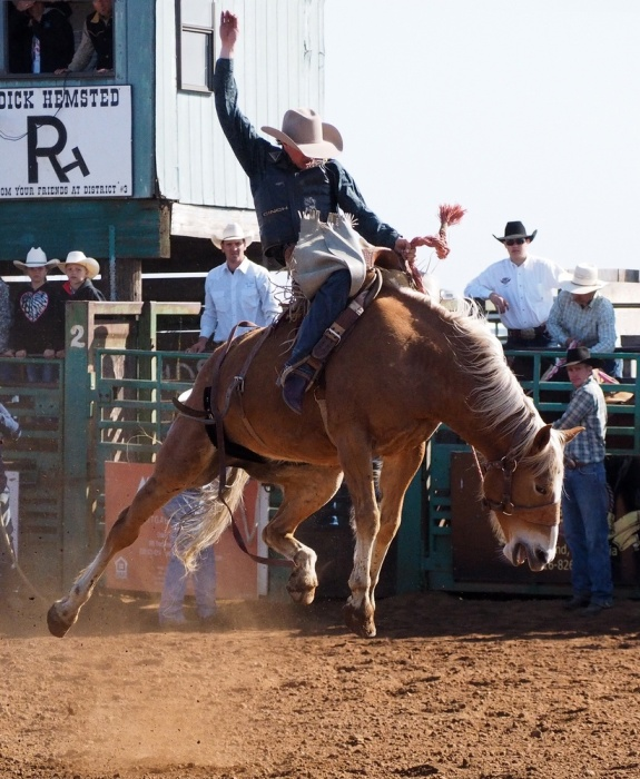 HSRodeo_201403_048